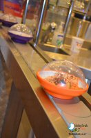 Dinner At Yo! Sushi, Derby To Celebrate Their 1st Birthday